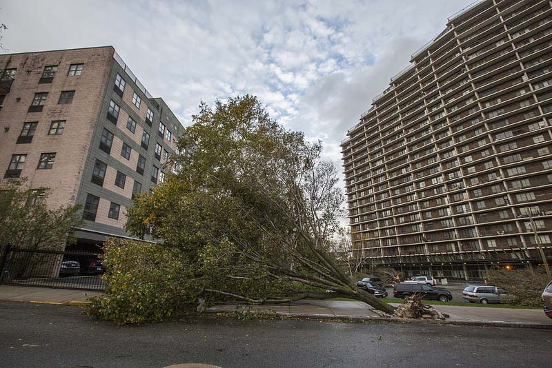 Hurricane_Sandy_by_Rob_Boudon